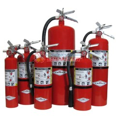 EXTINGUIDORES AMEREX ABC